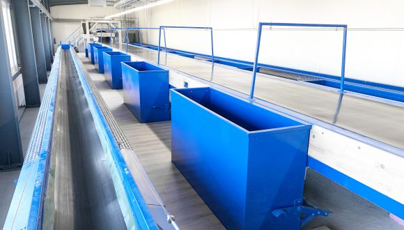 conveyors recycling plant